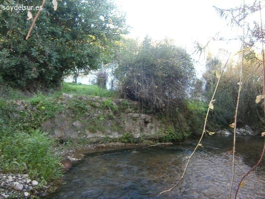 Terreno con olivar, huerta, vivienda